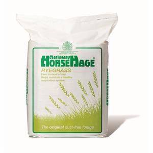 HORSEHAGE GREEN RYEGRASS Image 1