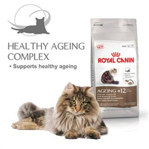 ROYAL CANIN AGEING +12 400g Image 1
