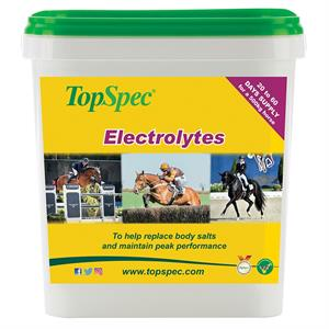 TOPSPEC ELECTRLYTES 3KG Image 1