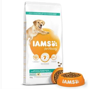 IAMS for Vitality Light in fat  Dog food with Fresh chicken 12kg Image 1