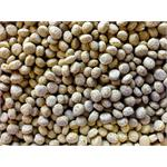 TITMUSS WINTER WHEATGERM FISH PELLETS 10KG thumbnail