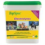TOPSPEC ELECTRLYTES 3KG thumbnail
